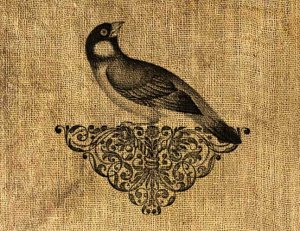 Vintage, Altered, Printable, Ornamental, Iron On, Digital Image Bird No.111
