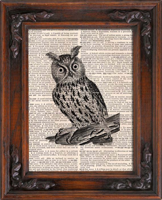 Art Print, VINTAGE OWL, Vintage, Dictionary Page Print 0130