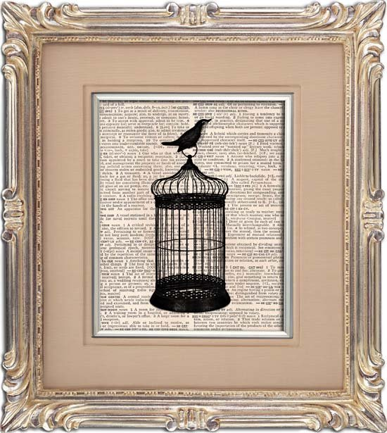 Art Print, BIRD , BIRDCAGE, Vintage, Dictionary Page Print 0118