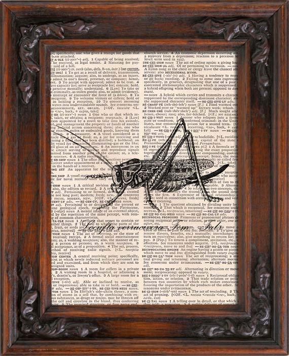 Art Print, GRASSHOPPER, Vintage, Dictionary Page Print 0117