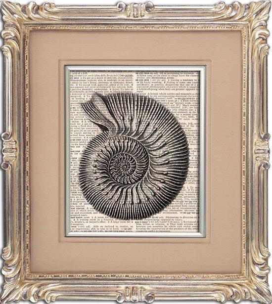 Art Print, Vintage, SEASHELL, Dictionary Page Print 0106