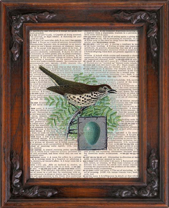 Art Print, Vintage, BIRD AND EGG, Dictionary Page Print 0103