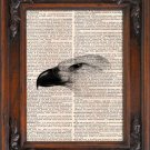 Art Print, Vintage, BIRD HEAD, Dictionary Page Print 0100