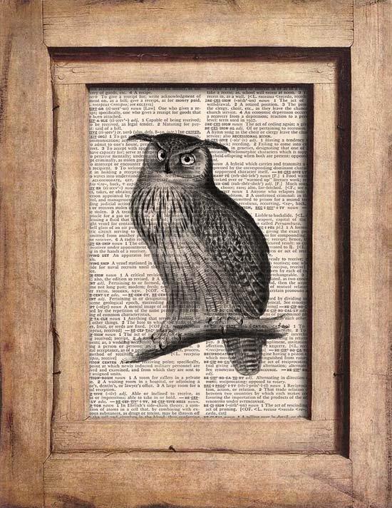 Art Print, Vintage, OWL, Dictionary Page Print 0095