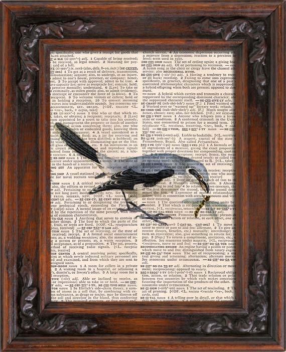 Art Print, Vintage, Bird, Dictionary Page Print 0080