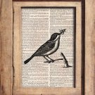Vintage, Bird, Dictionary Page Print 0073