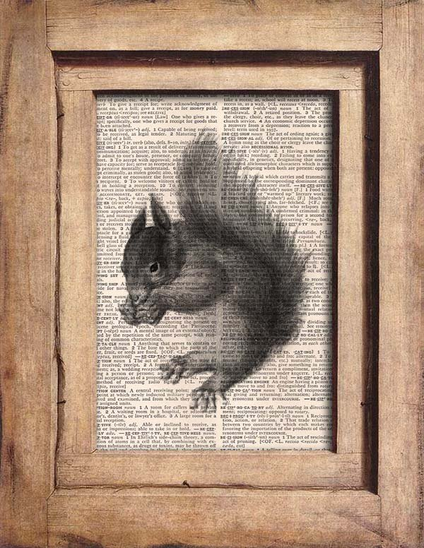 Vintage Squirrel Dictionary Page Print 0065