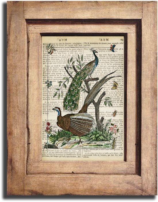 Vintage Peacocks Dictionary Page Print 0048