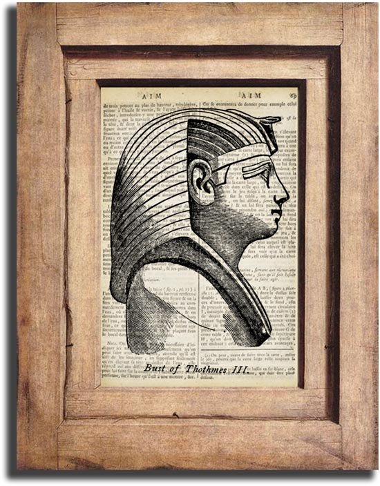 Art Print, Vintage, Illustration, Bust of Thothmes III Dictionary Page Print 0020