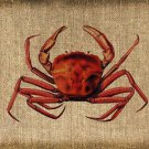 VINTAGE, Crab, Iron on, Ephemera, Altered, Digital Image No. 206