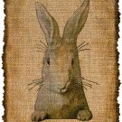 VINTAGE Rabbit, Iron on, Ephemera, Altered, Digital Image Transfer No. 210