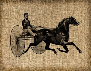 Vintage Harness Racing, Horses, Altered, Ephemera, Digital Image No. 245