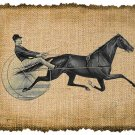 Vintage Harness Racing, Horses, Altered, Ephemera, Digital Image No. 248