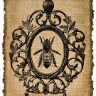 Vintage, Bee Framed, Altered, Ephemera, Iron on, Image No. 285