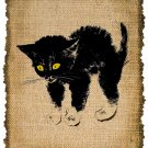 Vintage KITTEN , Altered, Printable, Iron On, Ephemera, Digital Image No. 309