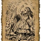 Vintage , ALICE IN WONDERLAND, Printable, Iron On, Ephemera, Digital Image No. 346