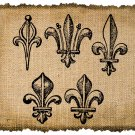 Vintage , Fleur De Lis, Altered, Printable, Iron On, Ephemera, Digital Image No. 359