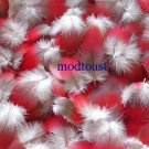 25 Red Macaw Body Feathers Greenwing Parrot Bird Fly Ty Tying Fishing Native Pow Wow Arts Crafts