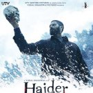 Haider Hindi Blu Ray (Shahid Kapoor, Tabu)(Bollywood/Films/Movies/2014)