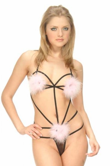 Wholesale sexy teddy only us$65 1dozen and shipping #ps50818