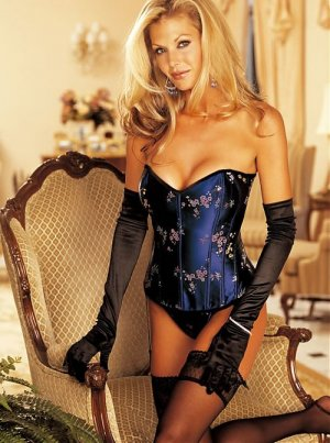 Wholesale bustier set only us$75.6 for 0.5dozen and shipping #7035( blue)