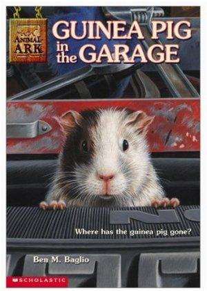 3  Ben M. Baglio's Animal Ark Children's Book Lot