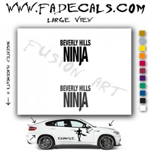 Beverly Hills Ninja Movie Logo Decal Sticker
