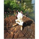 Ernest Finds a Tree Stump 8x10 photo