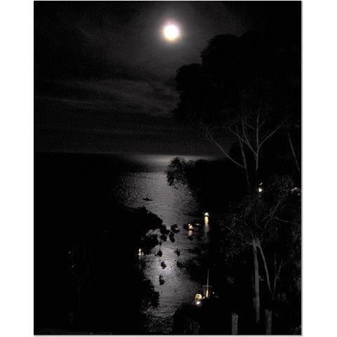 Full Moon Over Catalina 8x10 photo