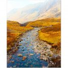 Scottish River 8x10 photo