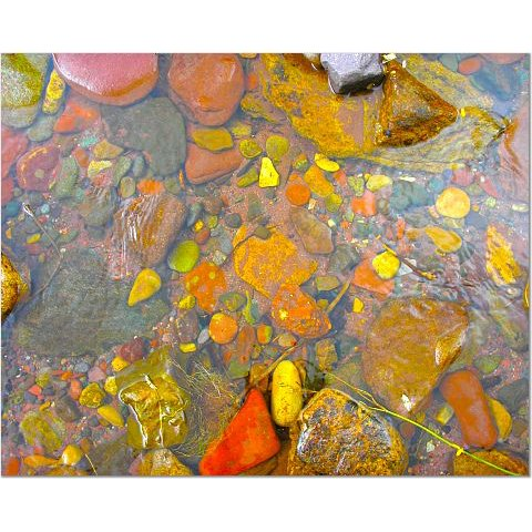 Rocks in Stream 8x10 photo