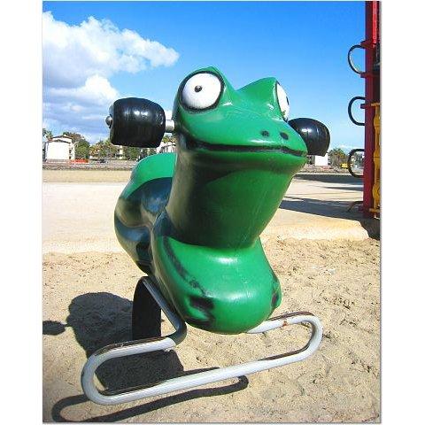 Playground Frog 8x10 photo