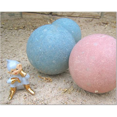 Ernest Plays Bocce Ball 8x10 photo