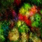 Garden Blossom