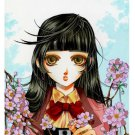 8x10 Sakura Print