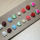 Sugar & Spice Earring Set
