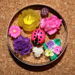 Secret Garden Push Pin Set