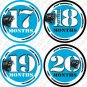 CAROLINA PANTHERS NFL MONTHLY ONESIE STICKERS football by Onesie Stickers, Free Milestone Stickers