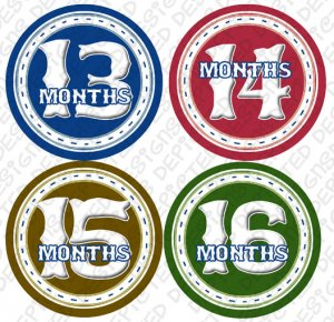 CIRCLES MONTHLY ONESIE STICKERS 13-24 MONTHS by Onesie Stickers, Free Milestone Stickers