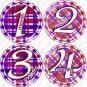 GIRLY GINGHAM ONESIE STICKERS, 1-12 months, purple pink plaid picture stickers