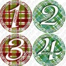 PLAID RED & GREEN ONESIE STICKERS, 1-12 months, picture stickers FREE MILESTONE STICKERS