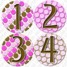 PINK BUBBLES ONESIE STICKERS 1 to 12 months by Onesie Stickers, Free Milestone Stickers