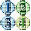 Monthly Onesie Sticker Boys Blue and white Gingham