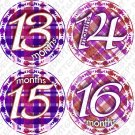 Purple Gingham Monthly Onesie stickers baby album stickers