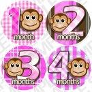 Girls Pink Monket Stripes Baby Month Stickers baby album stickers