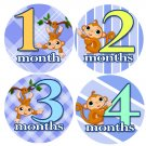 Laid Back Monkeys Baby Month Stickers baby album stickers