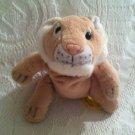 "Ganz Floppie Toss'ems 7"" Leona Lioness Bean Filled Plush Stuffed Animal Lion"