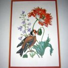 Bird & poppy botanical print British Museum of Natural History AL1111