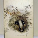Mady Stage print on masonite badger and leaves as new AL1333