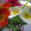 Flowers in a vase (Ref:FL-005)